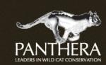 panthera_logo-2